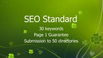 SEO Standard
